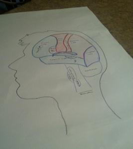 Mind of Austin
