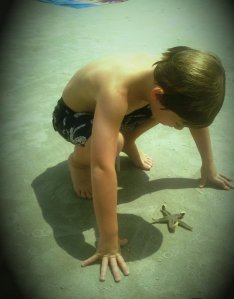 starfish wonder