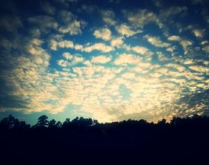 2014-10-24 20.06.03_kindlephoto-8751177