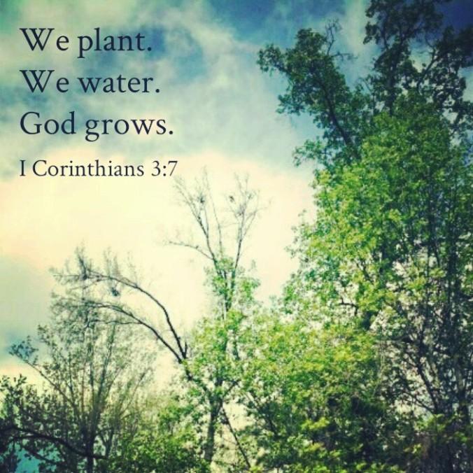 The soil of faith